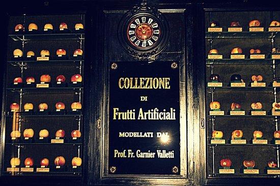 museo-della-frutta